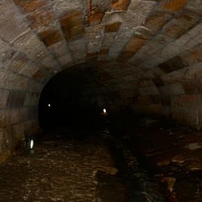 Sydney's Tank Stream