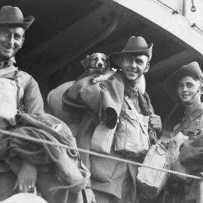 Evacuation from Tobruk, 1941