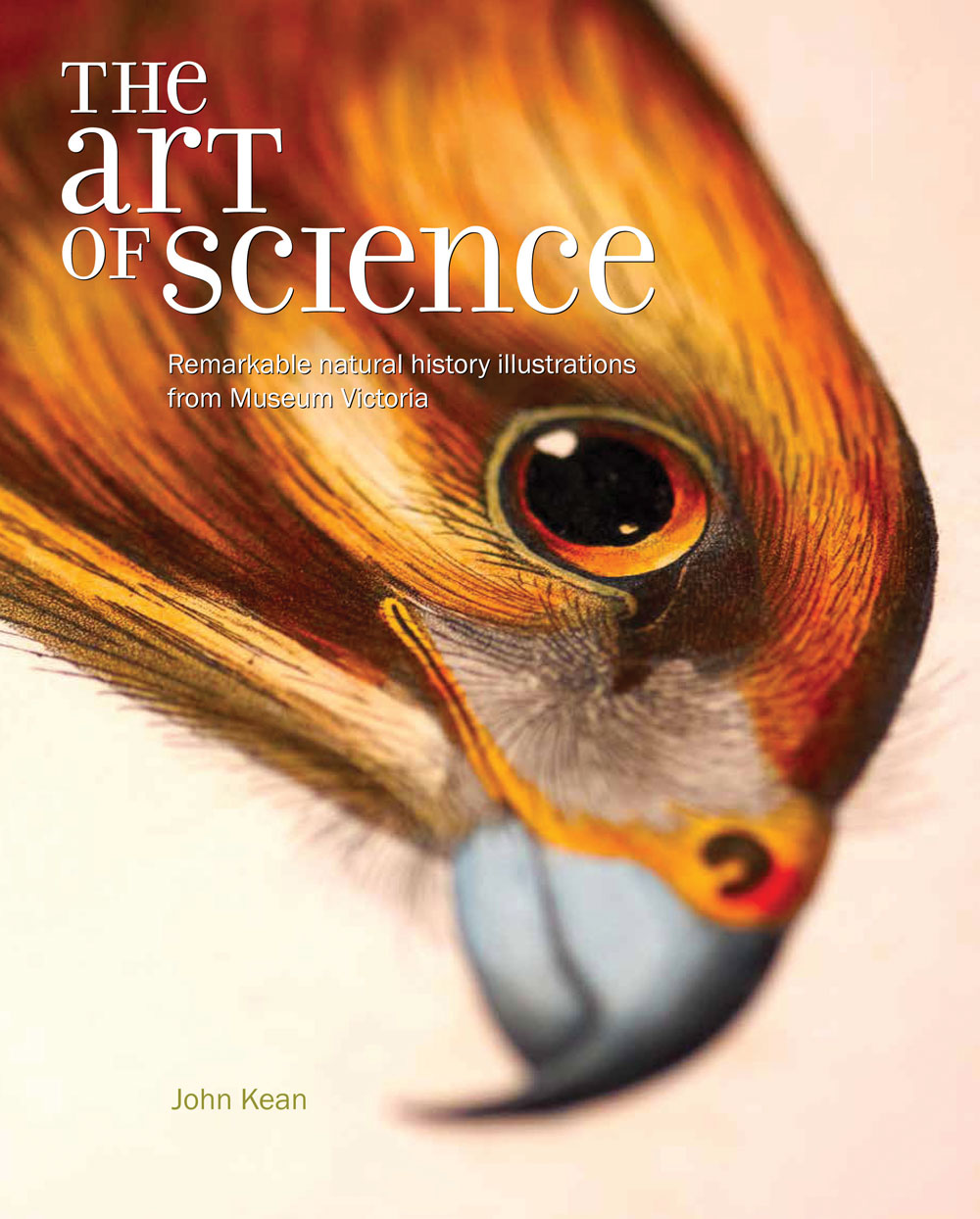 The Art of Science – Remarkable Natural History Illustrations from Museum Victoria