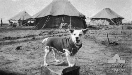 Horrie standing on a fuel can wearing his Corporal's uniform in Syria, 1941.