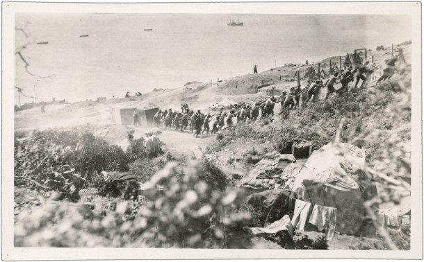 Dragging water tanks up to Walker's Ridge at Gallipoli, 1915.  From Lord Casey's album. Courtesy NAA, ID M1145,3B/185.