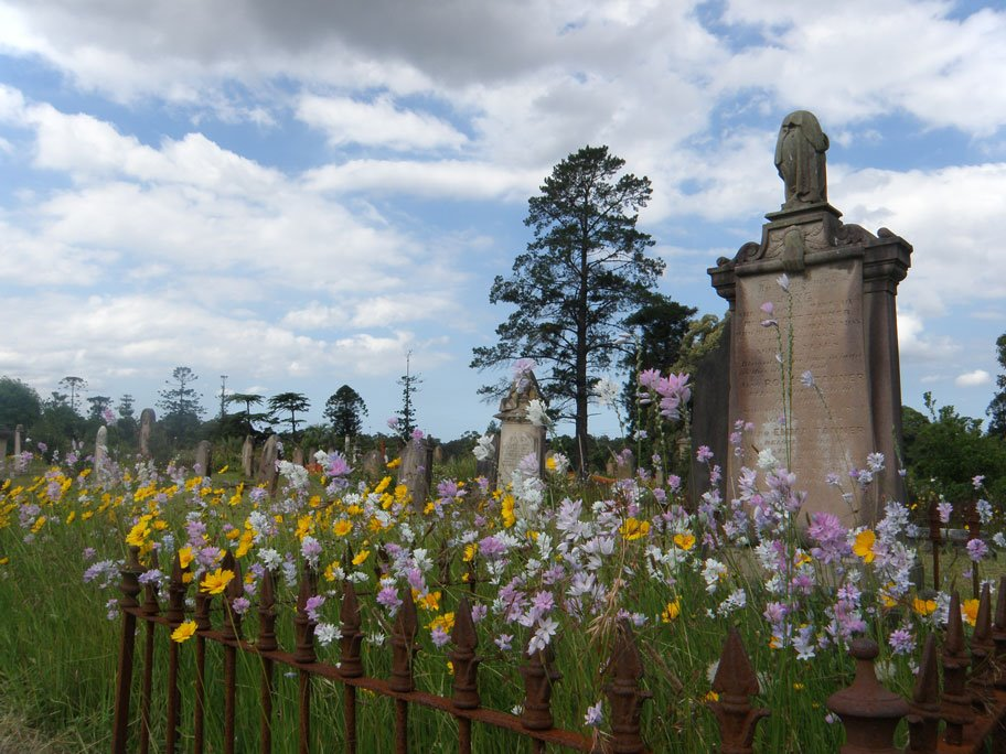 Rookwood Cemetery in Spring