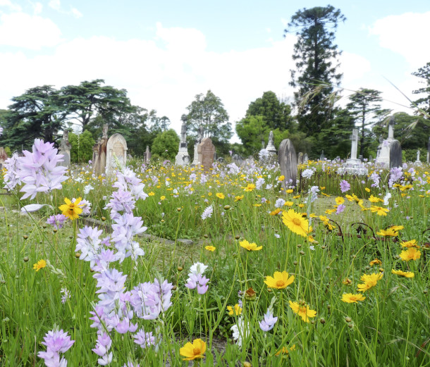 Image courtesy Rookwood General Cemeteries Reserve Trust.